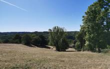 Property for Sale : Land in NONTRON. Price: 17500 €